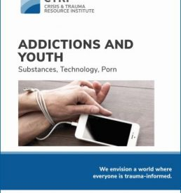 Image of Addictions and Youth manual
