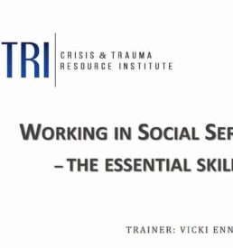 Image of working in social services webinar