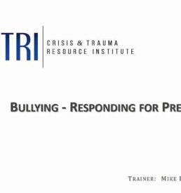 Image of Bullying webinar