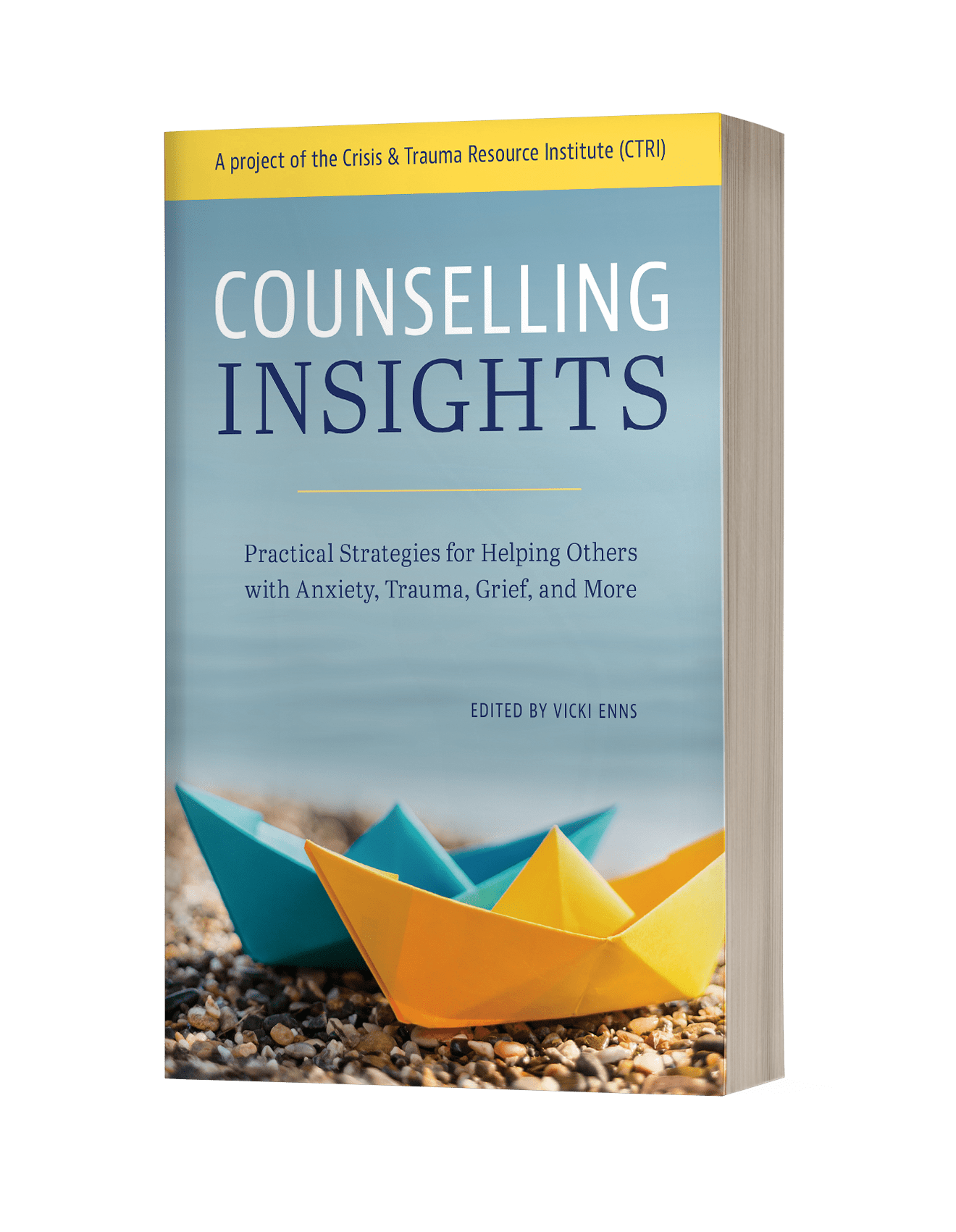 Photo of Counselling Insights Book