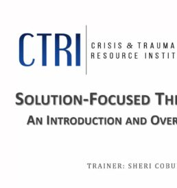 Image of webinar Solution Focused Therapy