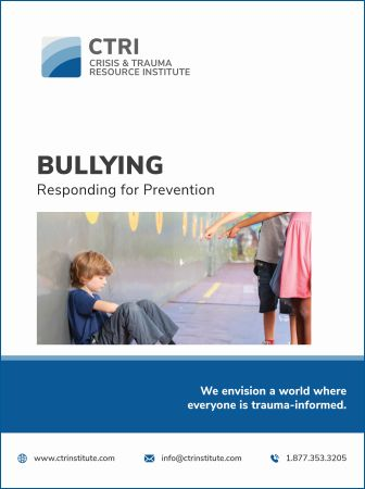 Photo of Bully manual cover
