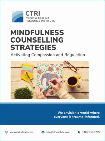 Photo of Mindfulness Counselling Strategies manual cover